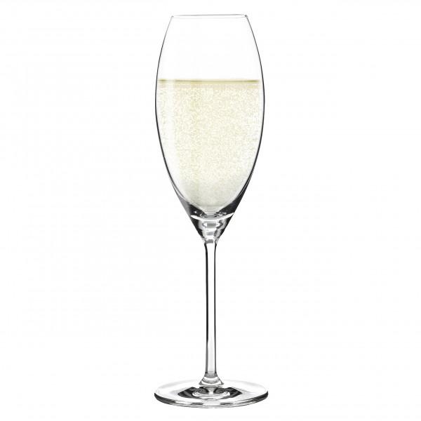 Aspergo 6er Set Champagnerglas von Sykes Langlois